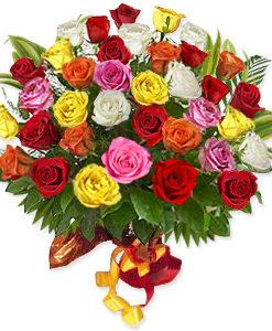 36_mixed_roses