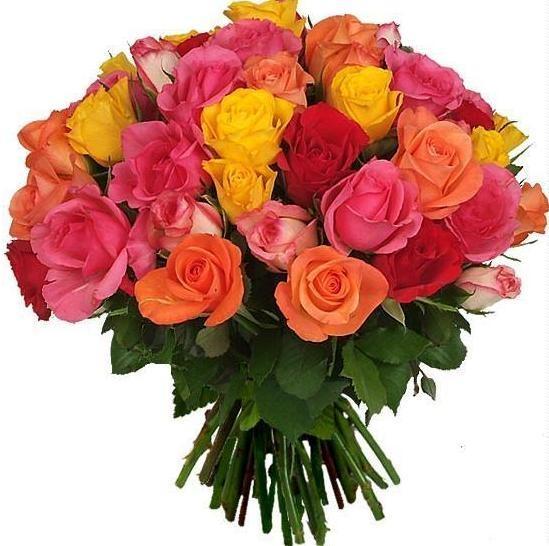 multicolor de 40 rosas cortas 100 - Imagenes De Ramos De Flores