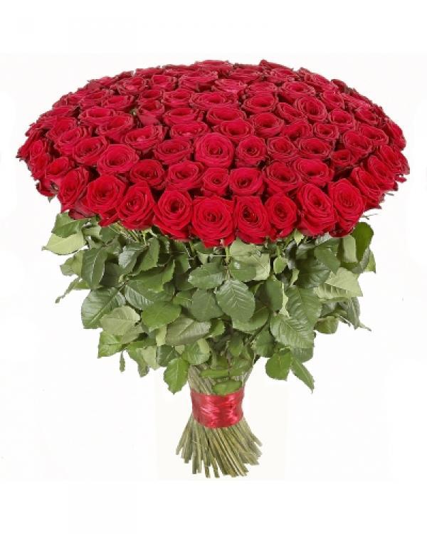 Romina Rosas Rojas El Amor Eterno Yamil Floristas